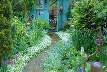 Outside / gardening and landscape ideas / by Rene M.