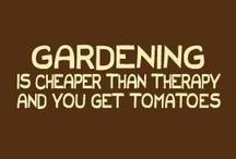 garden inspiration / by Penelope Hebrew