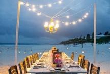 Party Ideas / by Christine Anne