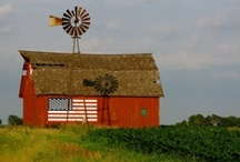 Let Freedom Ring! / Land of the free because of the brave! Let's show our American pride!  / by Illinois Farm Bureau