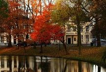 Autumn / My FAVORITE time of year!  / by Octoberbeauty