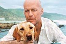 Favorite Actors - Bruce Willis / by Joseph Delmonaco