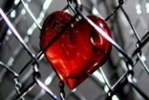 Heart / by Paula Brown