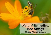 Natural Health + Remedies / Happy Mothering stands by all-natural methods for healing.  No more uncertainty when treating health problems.  Trust these natural remedies for your health.  More all-natural living content can be found at http://www.happy-mothering.com / by Happy Mothering