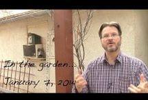 A Gardener's Notebook / Gardening Pins from my blog, A Gardener's Notebook and others / by Douglas E. Welch