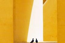 [ COLOUR - YELLOW ] / by Ania Steshko