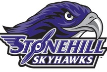 "Ace / Meet ""Ace"", the mascot of the Stonehill College Skyhawks. / by Stonehill College"