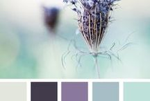Color Palettes / by Mashaide Holden
