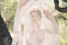 Spring Bridal / by Jodi Miller Photography