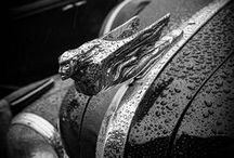 wheels... / by Cammy