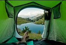 Camping / by Cammy