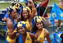 Caribbean Diaries / @caribdiaries Official blog for #Caribbean #Entrepreneurs Association Online (CEAO) - Under The Magnifying Glass -  #CaribbeanEntrepreneur #BizOpts #TravelCaribbean   / by GuruDan Ram