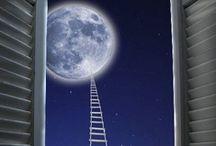 Moonlighting / by Val Lesiak