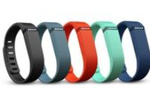 Fitbit Family / Meet the Family / by Fitbit