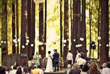 Tying the Knot. / by Leota