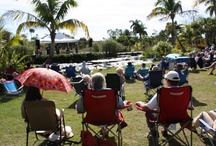 Jazz in the Garden / On the first Sunday of the months of December to April, from 2-4 pm, come visit Naples Botanical Garden and hear the greatest acts in southern Florida! visit www.naplesgarden.org/events.shtml for more details. Regular Garden admission, FREE for members. / by Naples Botanical Garden