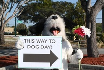 Dogs in the Garden / Dog Walks in the Garden are every Sunday, 9-11am, Tuesday, 8-11am, and Thursday, 3-5pm.  Dog Day in the Garden 2014 is Saturday, February 8, 2014 from 10 a.m. to 2 p.m.!  / by Naples Botanical Garden