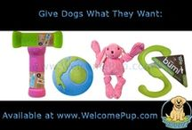 Fun Dog Gifts / Wouldn't you be happy to receive one of these cute dog gifts in the mail?  A unique, fun and thoughtful gift idea! / by WelcomePup.com