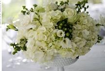 weddings / by Sue Glenn