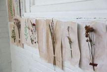 gettin' crafty. / by Alyssa Pettey