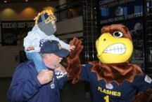 """Flash """"The Golden Eagle"""" / Go Flashes, go! Since """"The Golden Flash"""" first became Kent State's official mascot in 1926, its representations on campus have included a lightning bolt, a golden retriever sporting a blue and gold robe, a caveman-like creature named """"Grog,"""" a masked figure on horseback, and a live golden eagle. The first version of current-day Flash costume, an eagle wearing a big grin and a blue and gold jersey, was introduced in 1994. / by Kent State University"""