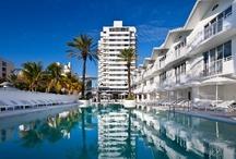 East Coast Spring Break / Spring Break Hot Spots | U.S East Coast Cities |   Myrtle Beach, Panama City Beach, Miami, Daytona Beach, South Beach, Disney World Orlando, Charleston, South Carolina / by BookIt.com®