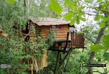 Offbeat Hotels & Attractions / Around The World | U.S. Canada and Europe | Crazy Hotels, Oddities, Roadside Attractions, Wacky Designs, Clever Accommodations & Silly Sideshows  / by BookIt.com®