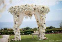 Wedding Ideas / by Miriam Palomo