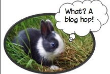Teaching Blogs / by Stephanie @ 3rd Grade Thoughts
