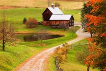 Country~Scapes / by Tonya Paul-Gex