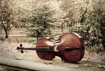 music / by Linda Dimmitt