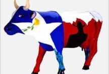 Cows on Parade / by MaryAnne Hodges