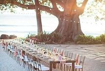 Wedding / by Hannah Mortensen