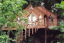 Treehouses / by Susan Durham