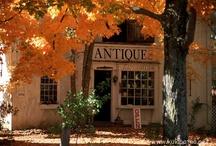 Autumn Splendor / I dream fall dreams a year long! / by Amber Lyon Ferguson