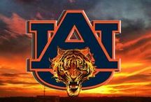 War Eagle - Hey! / Love the Auburn Tigers!   / by Polly Sue Rowlen