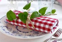RED an WHITE GINGHAM / by Dick N Jan Breedlove