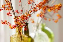Seasons to Decorate / Fun, holiday-themed decor ideas. / by Living Surrendered