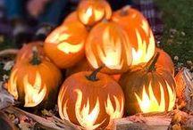 Halloween / by Nikki Klint