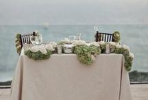 Wedding / by Rachael Elizabeth