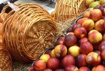 Wicker Baskets / Wicker Basket Collection. / by Wicker Paradise