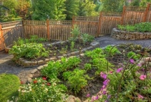 Gardens of bountiful harvest / by Diane Harvey