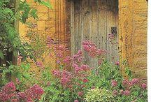 Garden gates / by Carlos Aime
