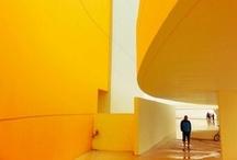 Life in Yellow / by Daniel Paya