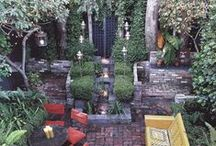 backyard and garden / by Alexi Tavel