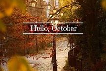 Fall and Halloween / My favorite time of the year!  / by Lauren Scheier
