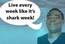 Live Every Week Like It's Shark Week / by 30 Rock