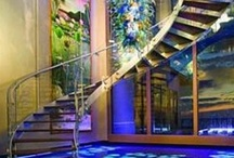 Stairs / Stair envy--I'm obsessed with stairs because we don't have any! / by Debra Daniels-Zeller