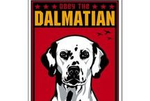 Dalmatians / It's a spotted world. We just live in it. / by Concetta Phillipps