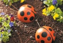 gardening / by Denise Brokmeyer
